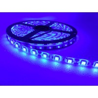 5050 60LED Stripe Light 5M/roll DC12v (Blue) - Waterproof