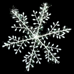Snowflake Feather Decoration